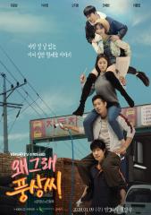 韓国ドラマ どうしてプンサンさん 왜그래 풍상씨 ウェグレプンサンシ 無料視聴