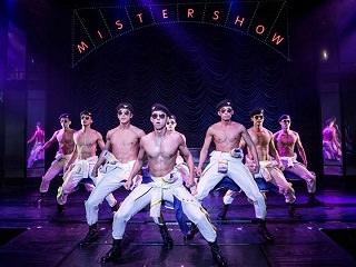 「Mr.SHOW」公演チケット