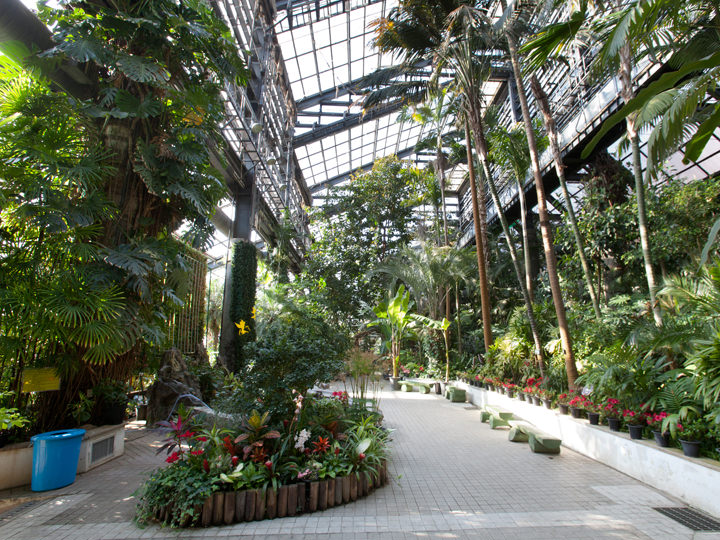温室は動物園の敷地内にあり