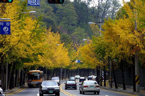 南山(ナムサン)素月道(ソウォルキル)(漢江鎮駅付近にある散策路の出発地点)