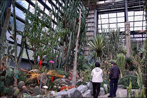 動物・植物園、美術館まであるソウル大公園