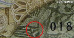旧1万ウォン表の世宗(セジョン)大王の服に、キム・ミンジの足が2本!