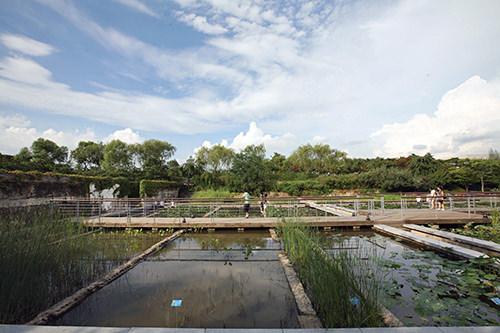仙遊島公園漢江(ハンガン)にある仙遊(ソニュ)貯水池施設を改造した韓国初のリサイクル生態公園。植物が水を浄化する過程を観察できる水生植物園や熱帯地域の水生植物が育つ温室があります。