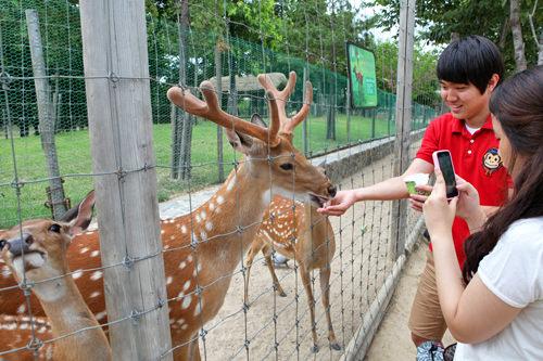 ソウルの森「自然と共に息づく森」というコンセプトのもと開園した巨大な都市型公園。5つのエリアに分かれたパーク内には自然の状態で維持されている生態の森やシカに餌付けできる体験場があります。