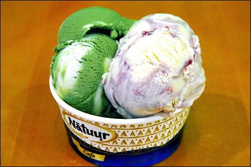 Natuur(ナチュール)人工着色料や香料を一切使わない自然派アイスクリームチェーン