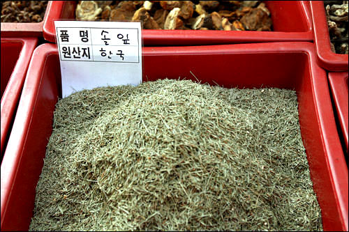 ソルリプ(松の葉)600g 5,000ウォン~