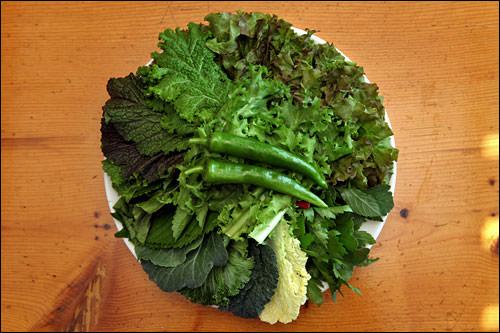 包み野菜の種類も豊富