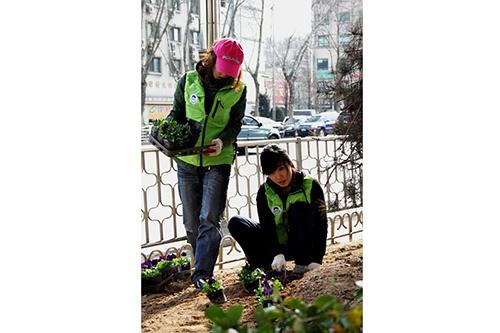 春を前に地域内の歩道へ花を植える活動