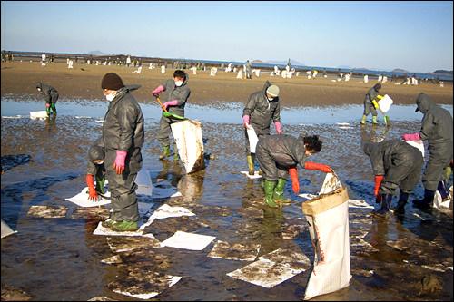 忠清南道(チュンチョンナムド)泰安(テアン)沖原油流出事故(2007年)の復旧活動