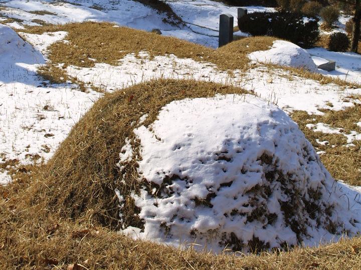 山にある土を盛った墓