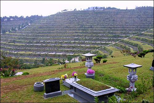 これが韓国のお墓。山そのものが巨大霊園! 韓国ではだいたいが土葬なのです。