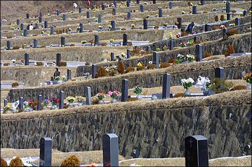 み~んなお墓! ここには在外韓国人たちのお墓もあるそう
