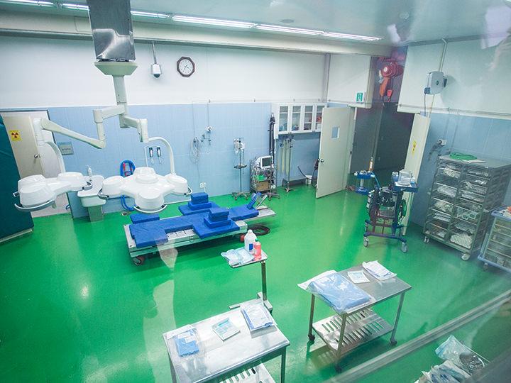 医療設備が整っている「馬病院」内部