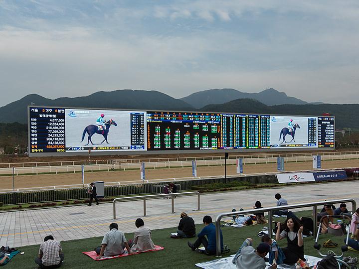 馬場に設置された、長さ127.2mの巨大スクリーン