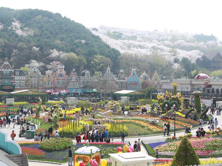 エバーランド|龍仁(京畿道)の観光スポット|韓国旅行「コネスト」