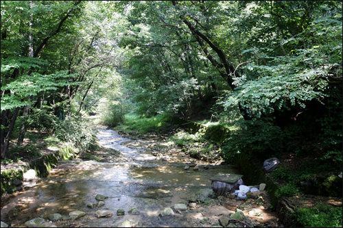 ソウル大学の裏冠岳山(クァナクサン)の渓谷