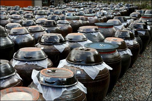 伝統製法はオンギと言う甕で発酵させる