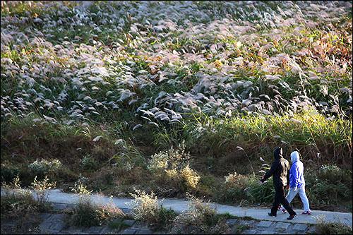 秋の仙遊島(写真はイメージです)