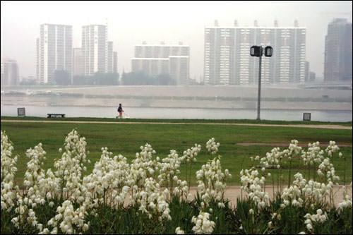 漢江市民公園から見た江北エリア