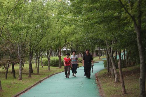 緑多い敷地内には散策路やサイクリングロードも