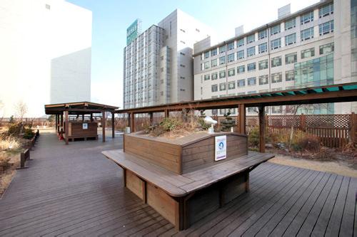 屋上庭園(本館3階)