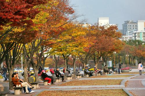 秋は紅葉の名所