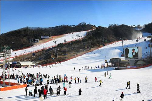 雪質が日本と違う韓国のスキー場