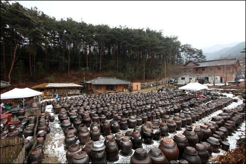 松花粉が舞う春、甕の中の醤油は一層風味が増す