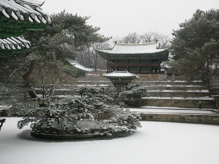 芙蓉池の雪景色