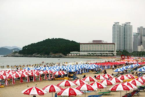 釜山をはじめ、韓国全国で利用可能!