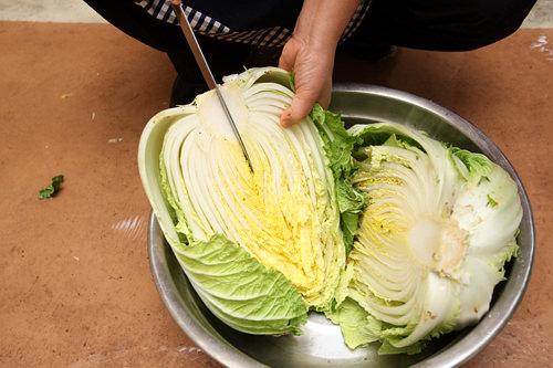 2.後ほどさらに2等分にするため、根元に切れ込みを入れておく。塩がよく染み込み、漬かりを良くする意味もある。