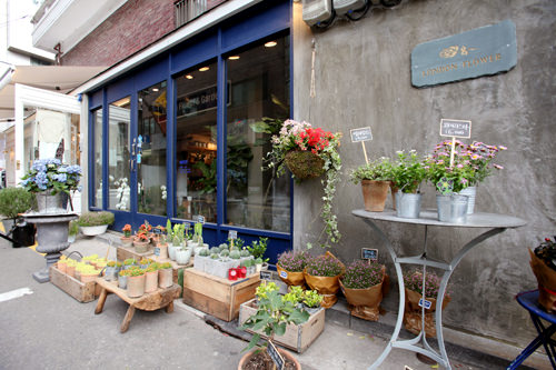 かわいらしい鉢植えが並ぶこぢんまりとした花屋London Flower & Garden