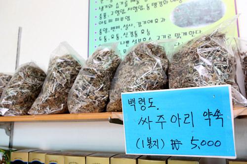 白翎島在来品種のヨモギ