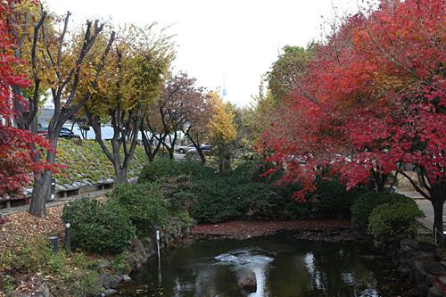 純献館前の池。奥に小さくソウルタワーの姿も