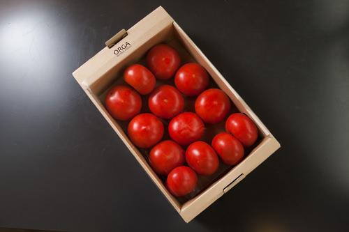 無農薬で育った完熟トマト15,800ウォン
