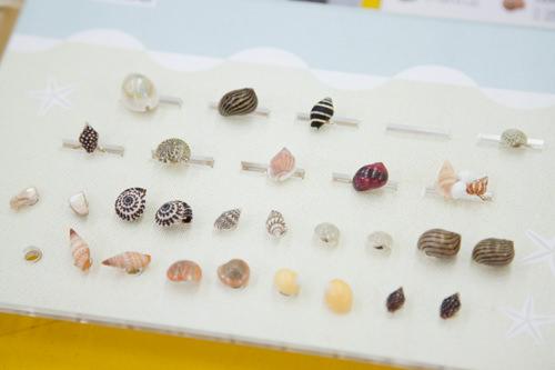 本物の貝殻で作ったピアス・リング11,000~12,000ウォン(JADE SOCIETY)