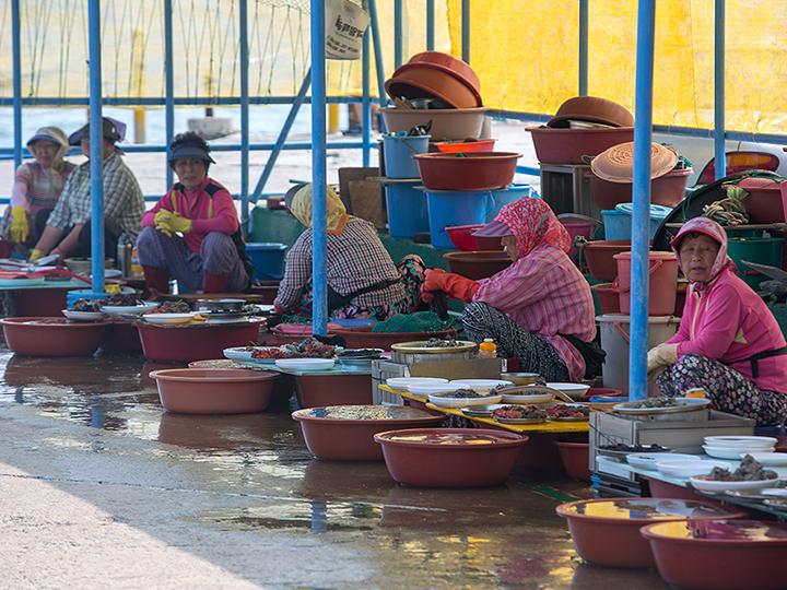 新鮮な海産物を販売する露店