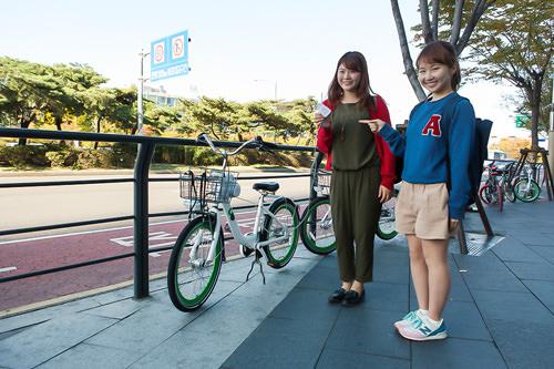 自転車は一旦入口前の道路沿いへ