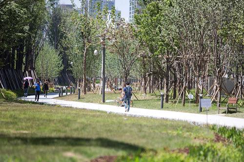 緑が生い茂る「京義線スッキル」