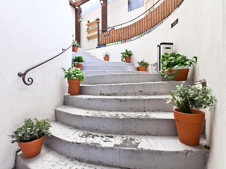 入口入ってすぐの階段