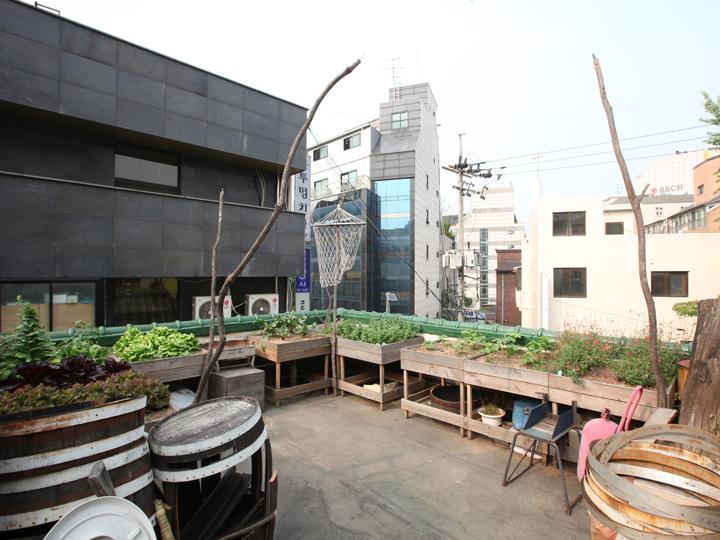 手作り感満載の菜園
